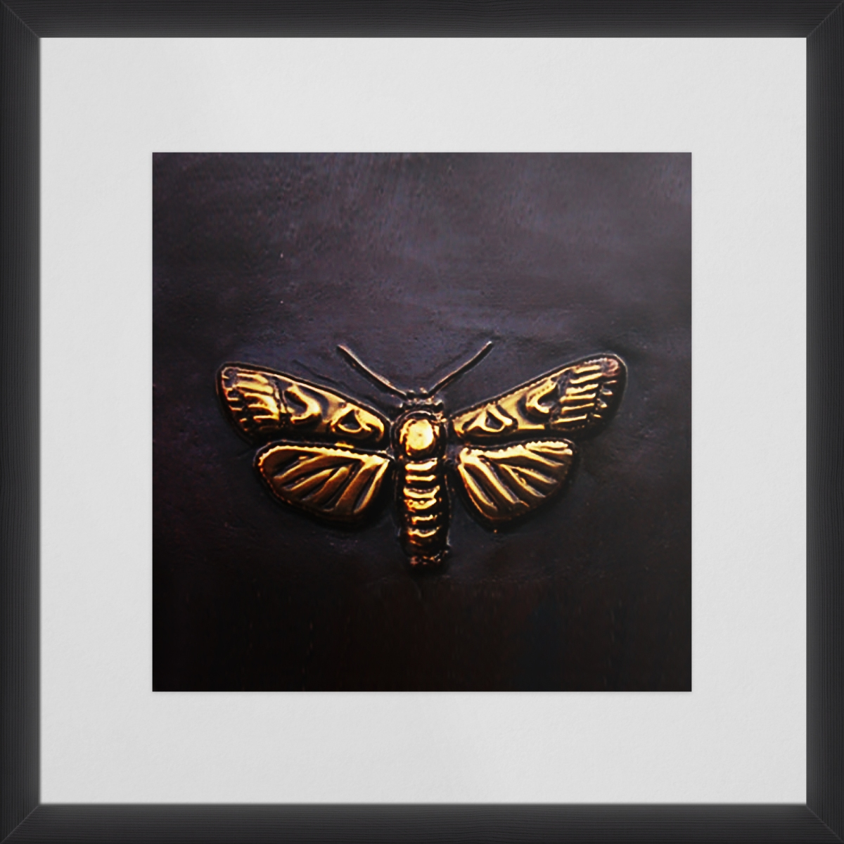Tobacco Moth |8X8