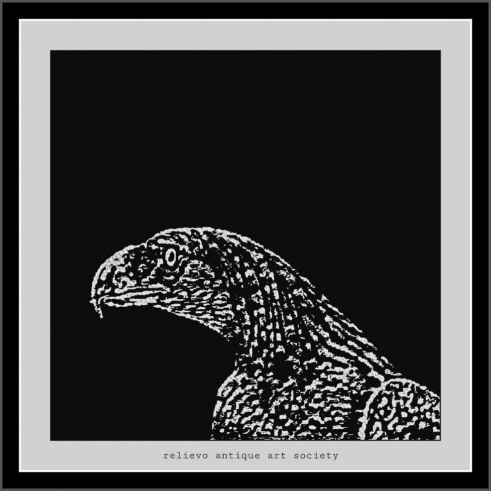 Philippine Eagle | 24 X24″